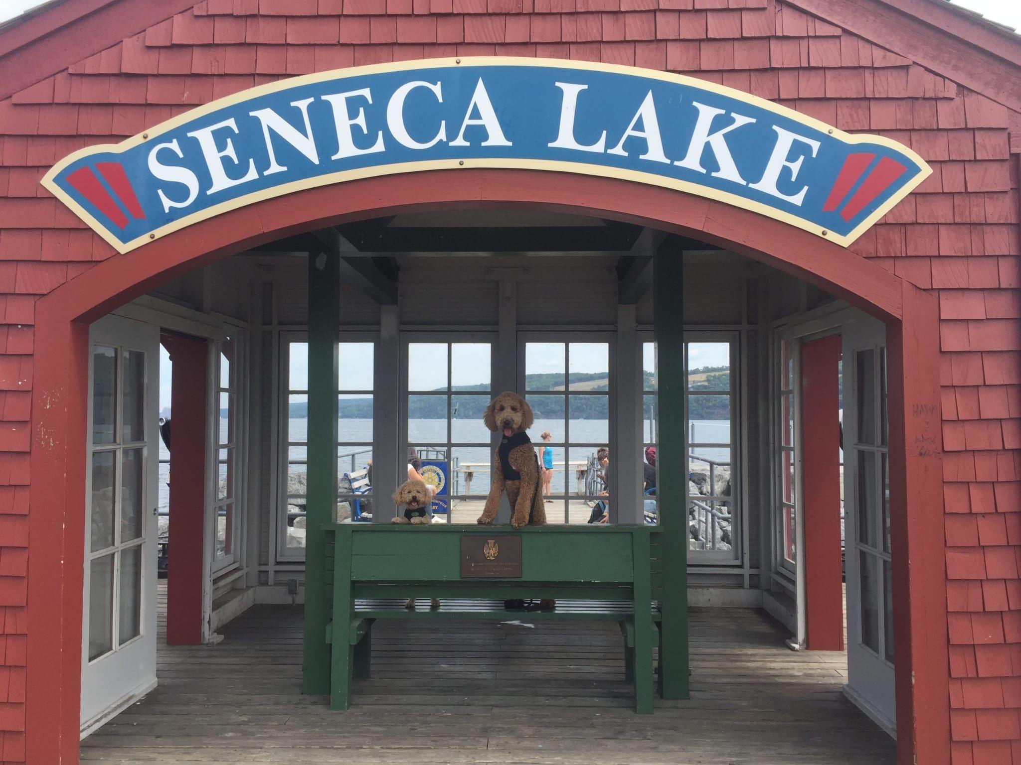 seneca lake boat rentals ny