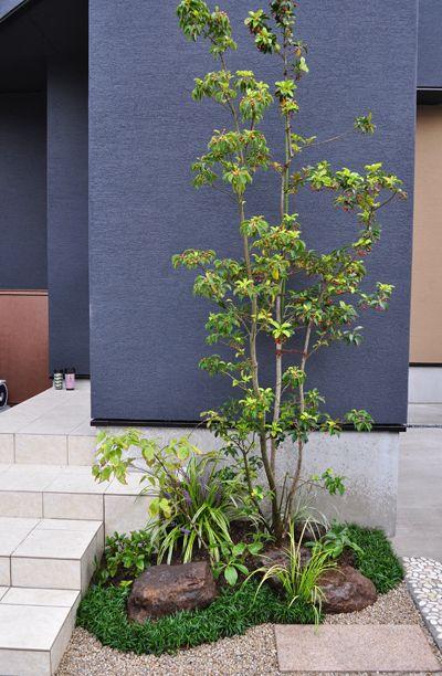シンボルツリーにおすすめな庭木15種類と選び方 おしゃれに見せる植栽