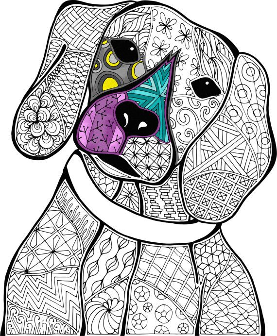 animal adult coloring book animal colouring sheets digital colouring book animal zentangle coloring book blank coloring intricate pdf - Digital Coloring Book