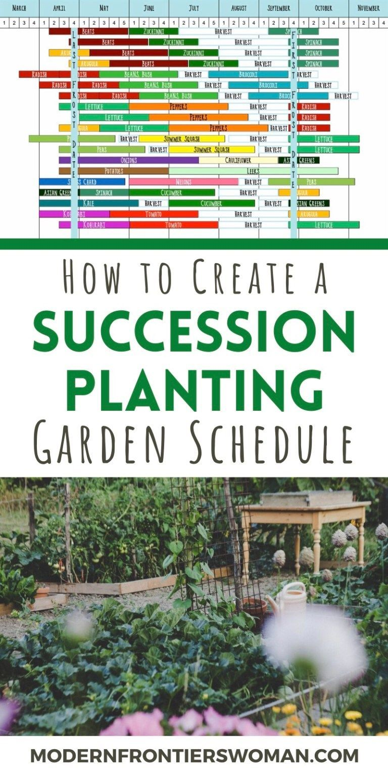 How to Make a Succession Garden Schedule,  #Garden #Schedule #Succession