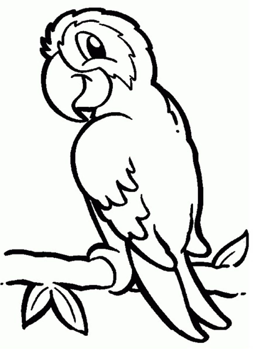 Parrots Coloring Pages To Download And Print For Free Bird