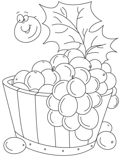 grapes in tub coloring pages download free grapes in tub coloring pages for kids