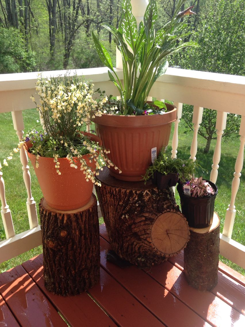 Use Logs As Outdoor Plant Stands For An