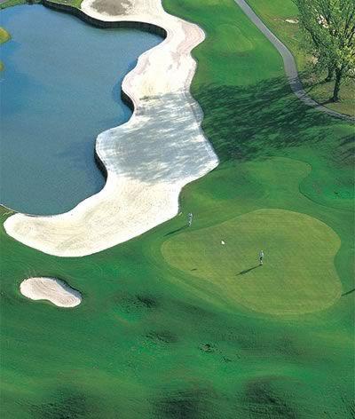 Black Bear Myrtle Beach Golf Course Myrtlebeach Com Golf Courses Golf Myrtle Beach Golf