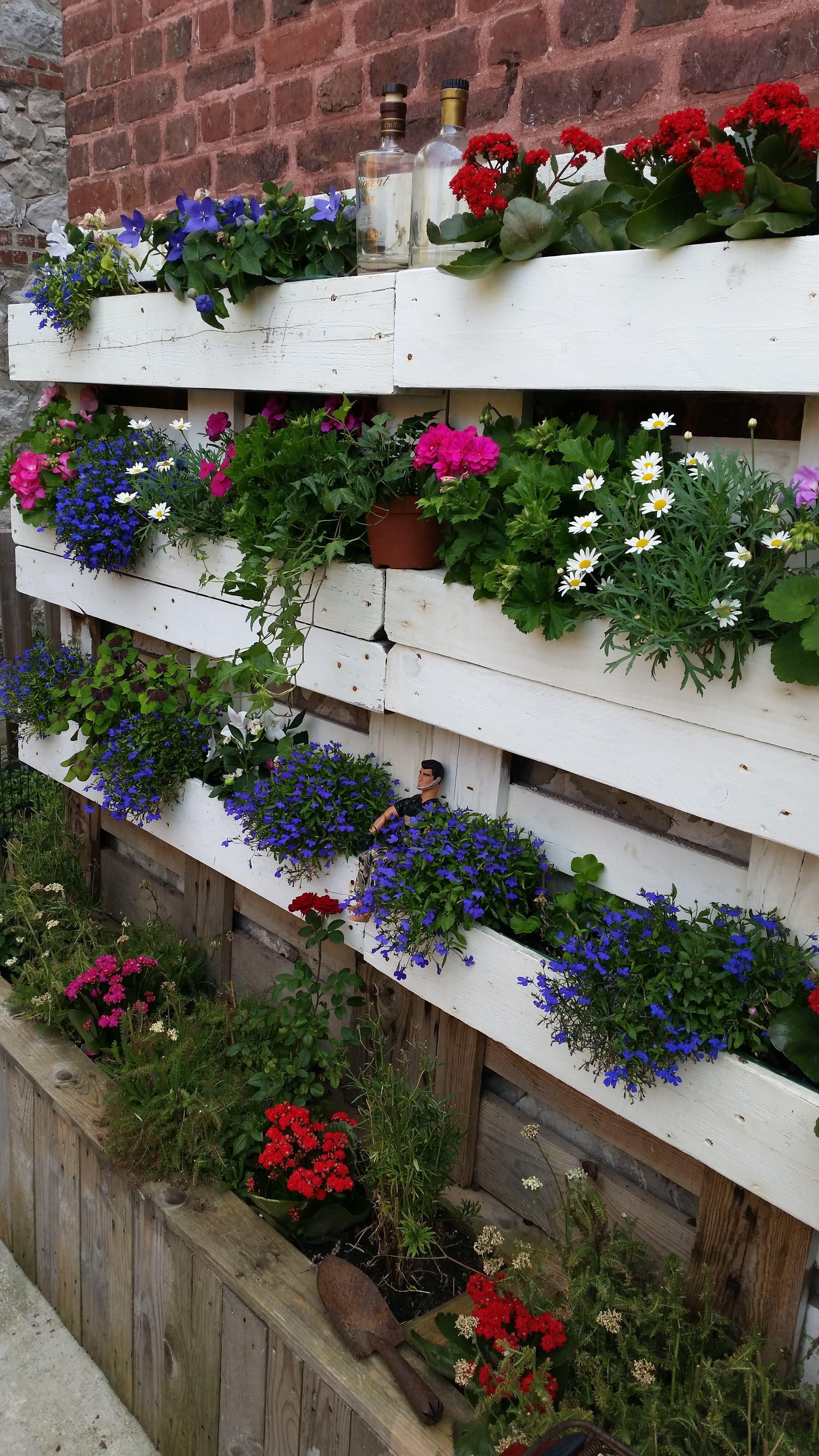 Mur Floral - Le Touquet / Vertical Garden   Pallets garden ...