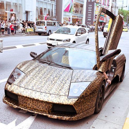 Leopard print Lamborghini where have you been all my life((Godiva style))!!!