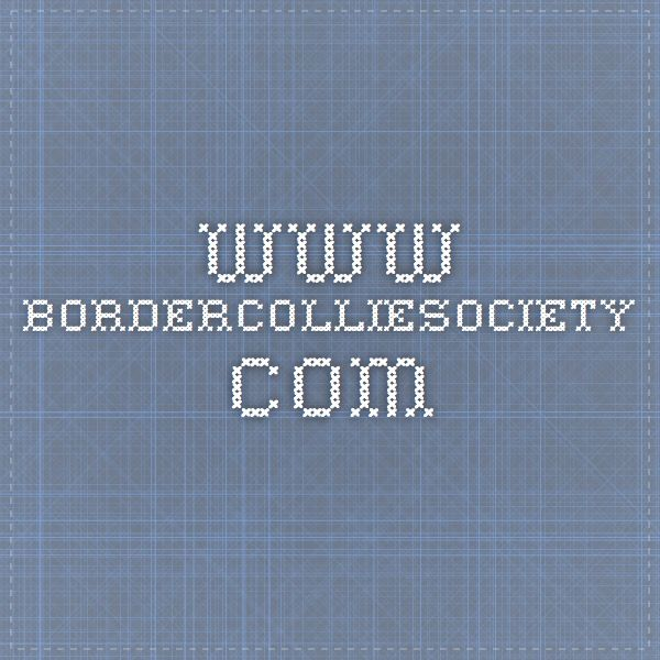 www.bordercolliesociety.com  Border Collie Rescue Groups in United States! *****Check here before adopting!