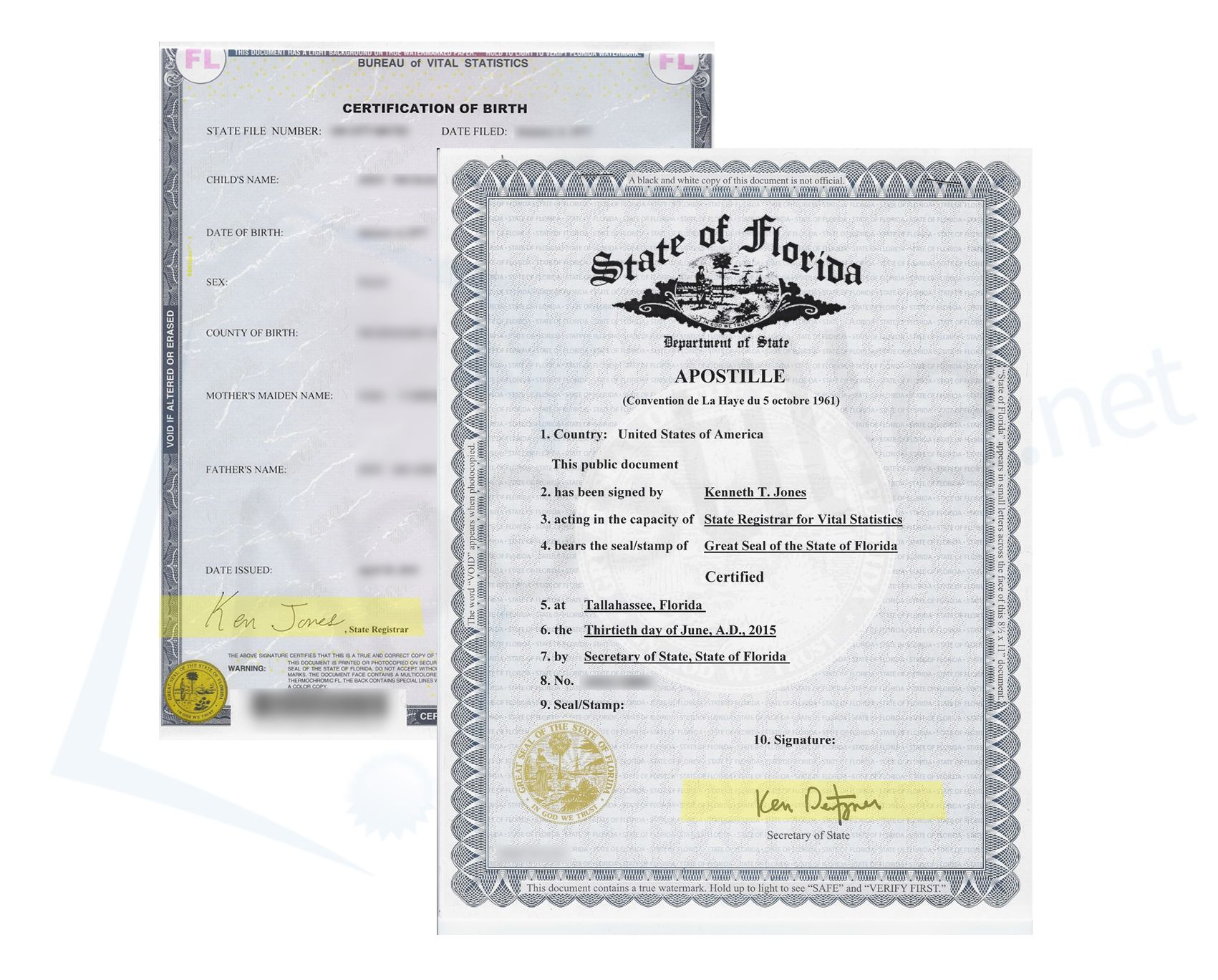Best State Of Florida Sample Apostille Images On