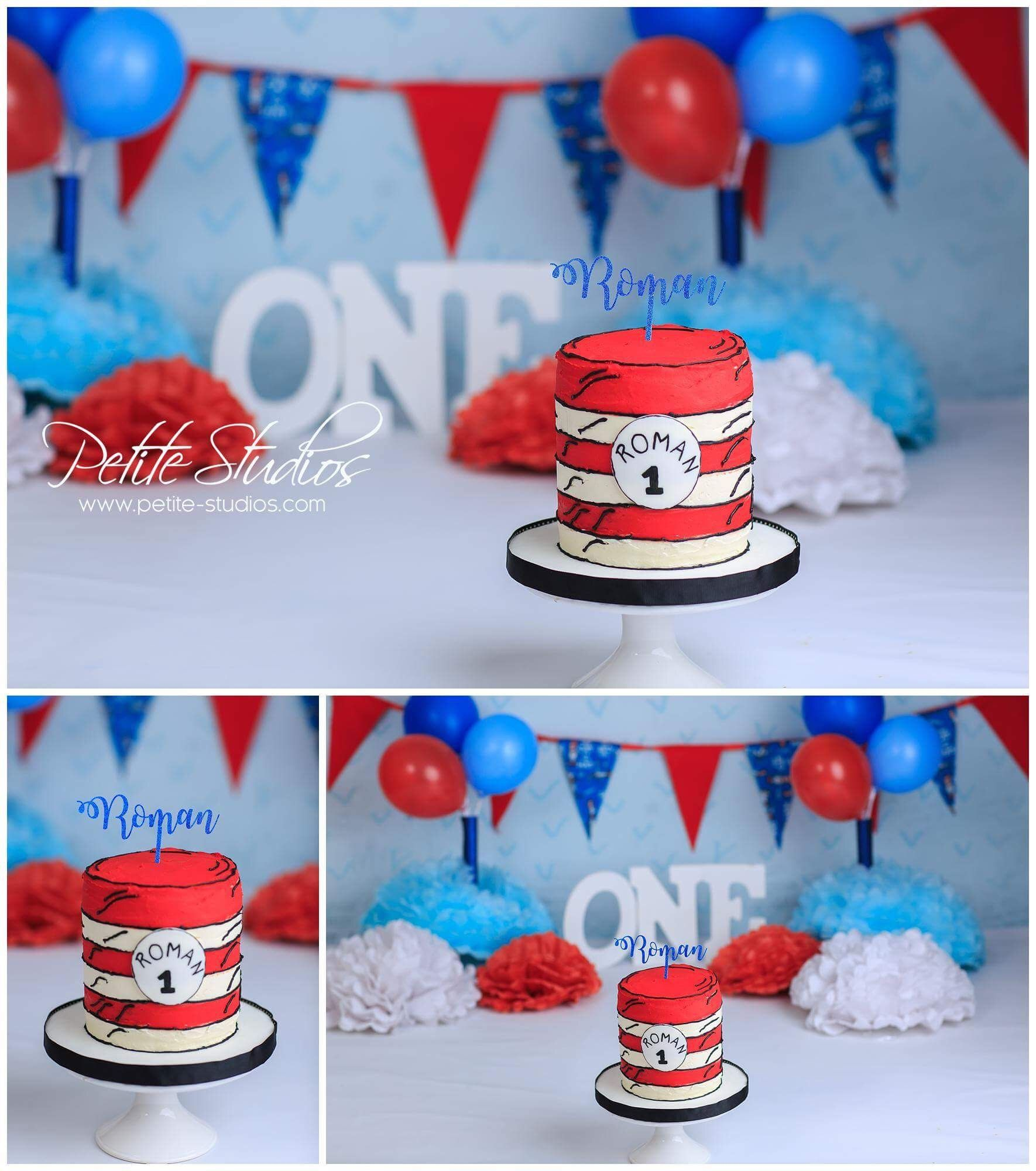 Dr Seuss Smash Cake Session With Images Dr Seuss Cake Dr