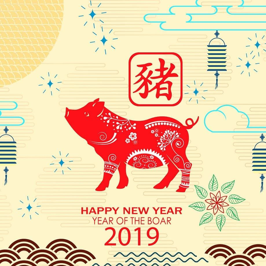 Happy New Year! Year of the Pig! 2019 in 2020 Year of