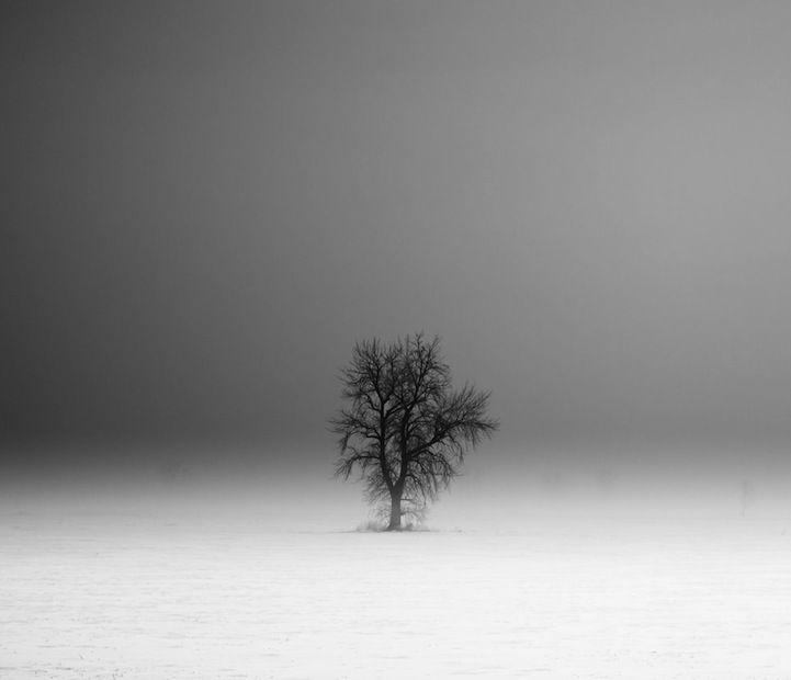 Evocative Black And White Landscapes By Derek Toye Black And White Landscape Landscape Surreal Photos
