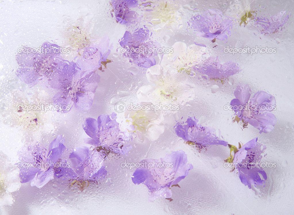 Lavender Floral Background Cart Cart Lightbox Lightbox