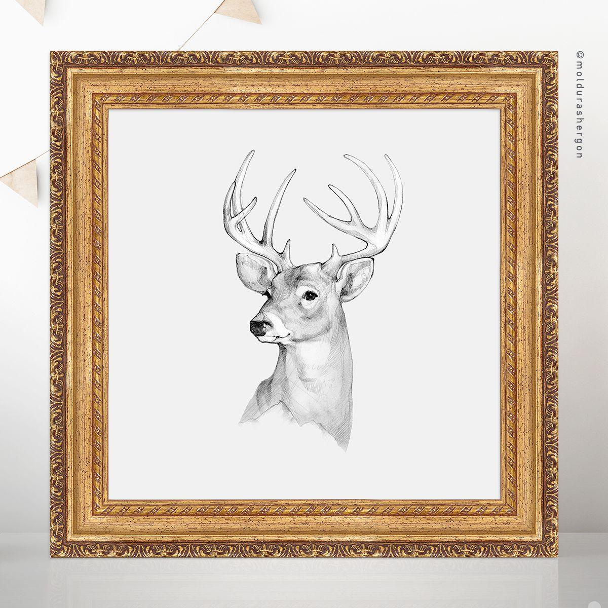Idea Nº1 Animales De Invierno Nos Encantan Las Fotografias Y Los Dibujos Realistas De La Naturaleza Para Esta Tem Cuadro Navideno Navideno Dibujos Realistas