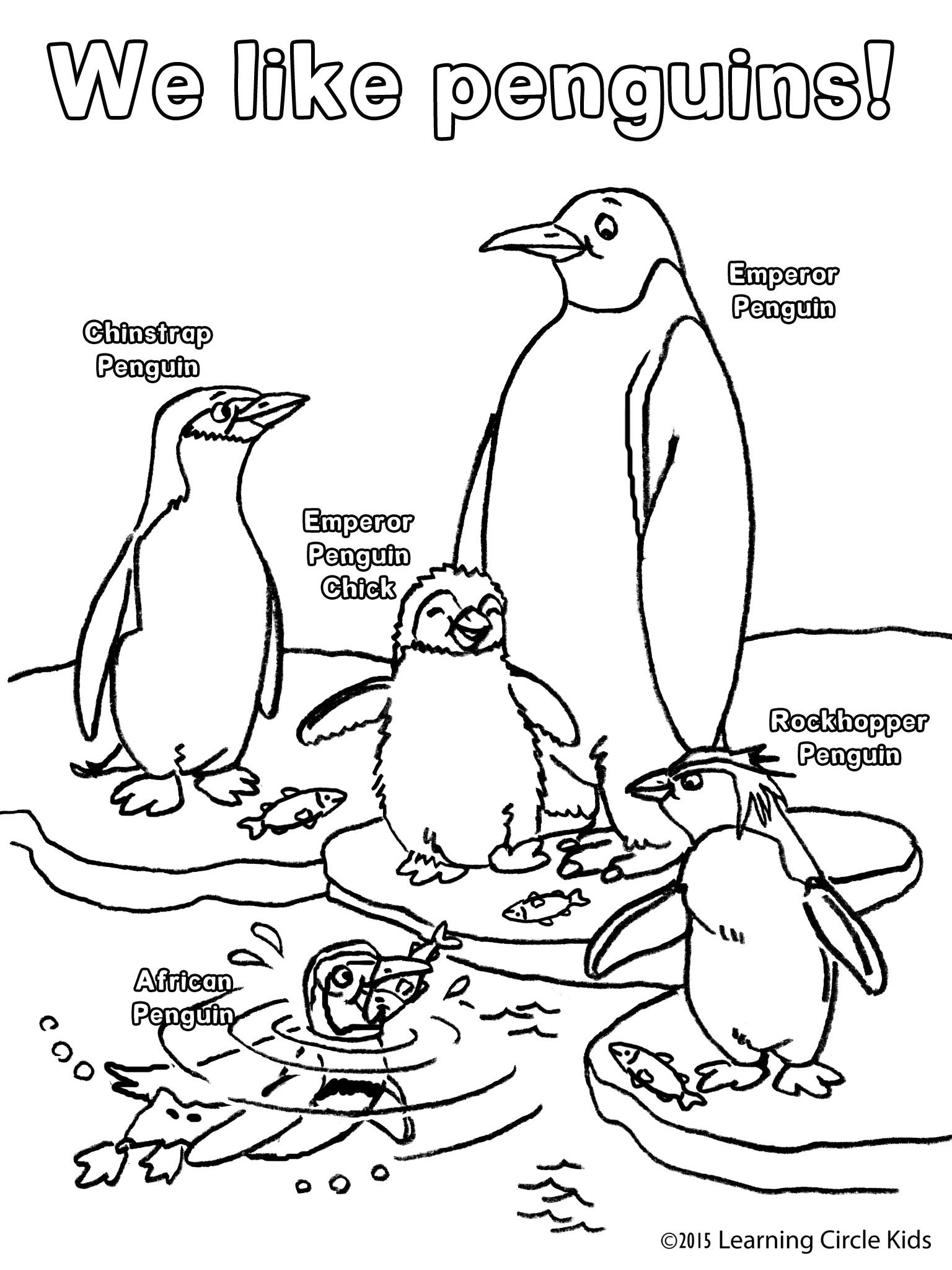 Free penguin coloring page from
