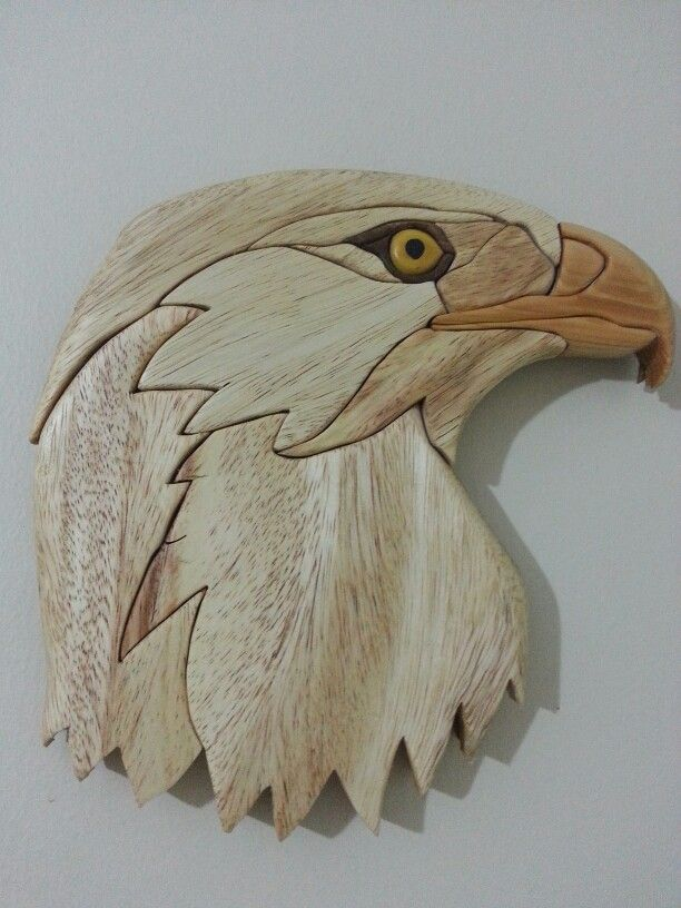 Eagle Intarsia I Made It Tom S Woodworking Shed Tut