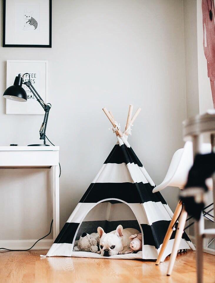 Awesome Teepee Dog Bed
