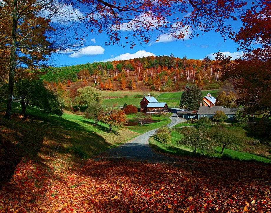 Sleepy Hollow Farm Woodstock Vermont Con Immagini Paesaggi