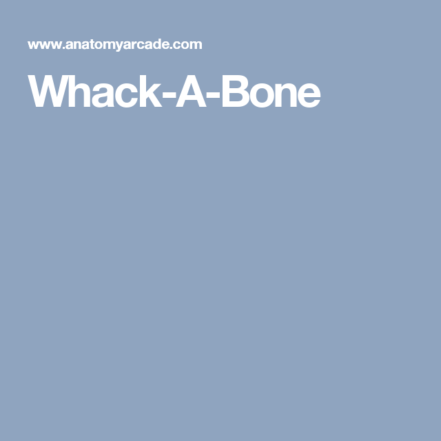 Whack A Bone Anatomy Pinterest Anatomy