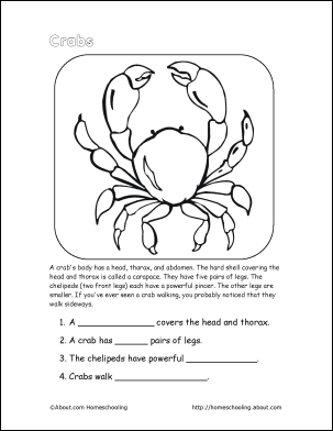 crab wordsearch vocabulary crossword and more reading comprehension word search and learning. Black Bedroom Furniture Sets. Home Design Ideas