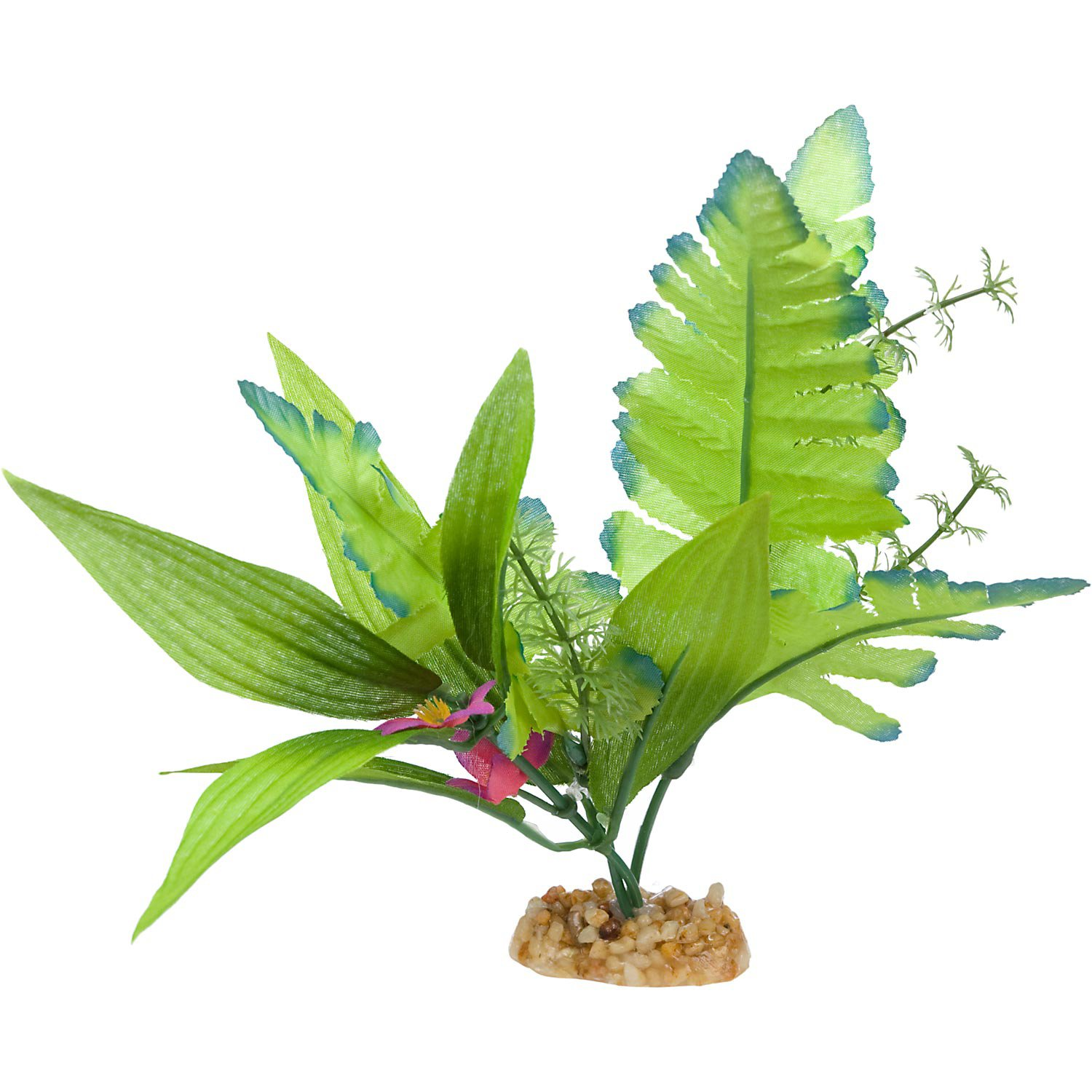 Imagitarium Leafy Green Silk Aquarium Plant Petco Planted Aquarium Silk Aquarium Plants Plants