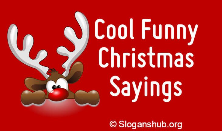 Funny Christmas Tree Quotes: Below Is A List Of 65 Cool Funny Christmas Sayings