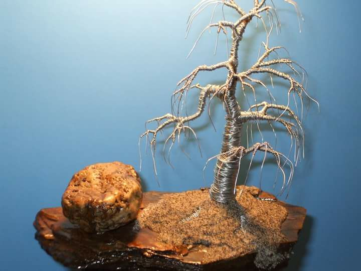 Wire bonsai tree sculpture by Randy Griffin of Griffin Modern ...