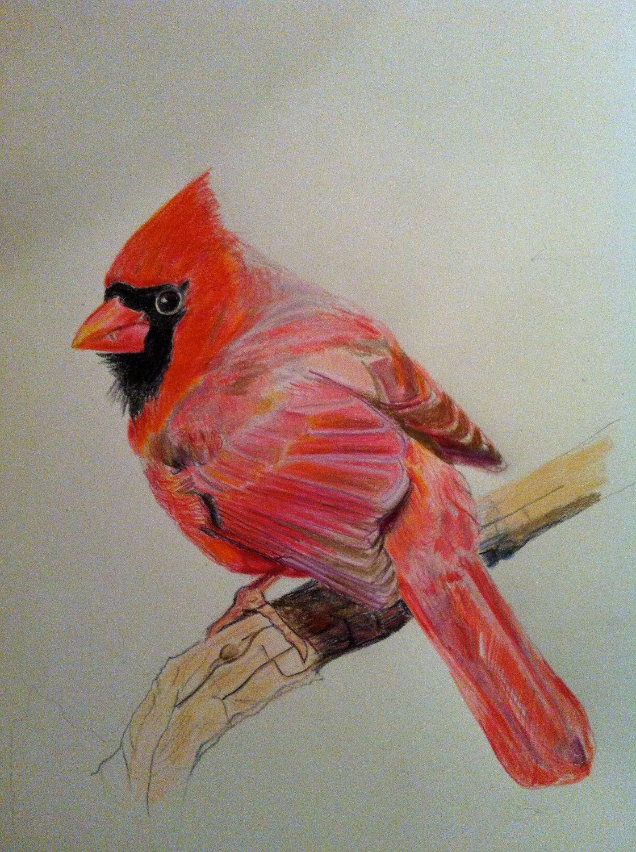 Cardinal Bird by Melangelo on Etsy
