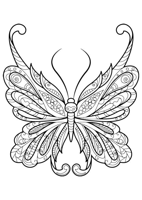 Pin On Butterflies Coloring Pages And Prints