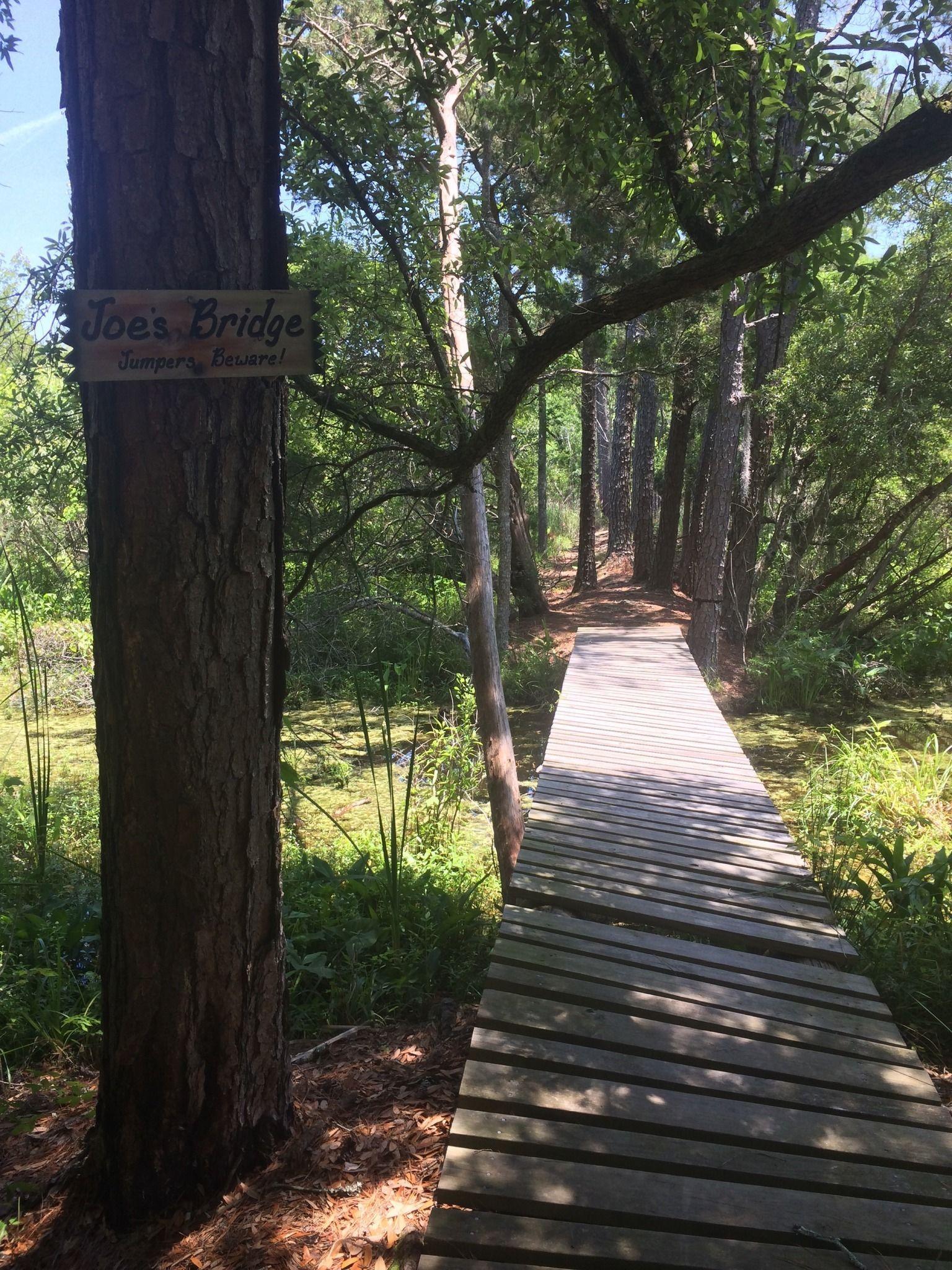 Marrington Plantation Trail Goose Creek Sc Explore The