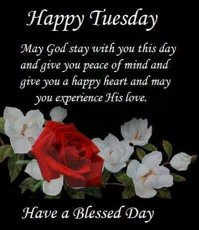 Pin by lisa osborn on daily blessings pinterest blessings tuesday morning happy tuesday tuesday greetings mornings daily walk blessings savior book jacket amen m4hsunfo