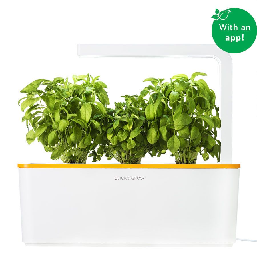 The Smart Garden 3 Indoor Grow Kits Herb Garden Kit Fresh Herbs Garden