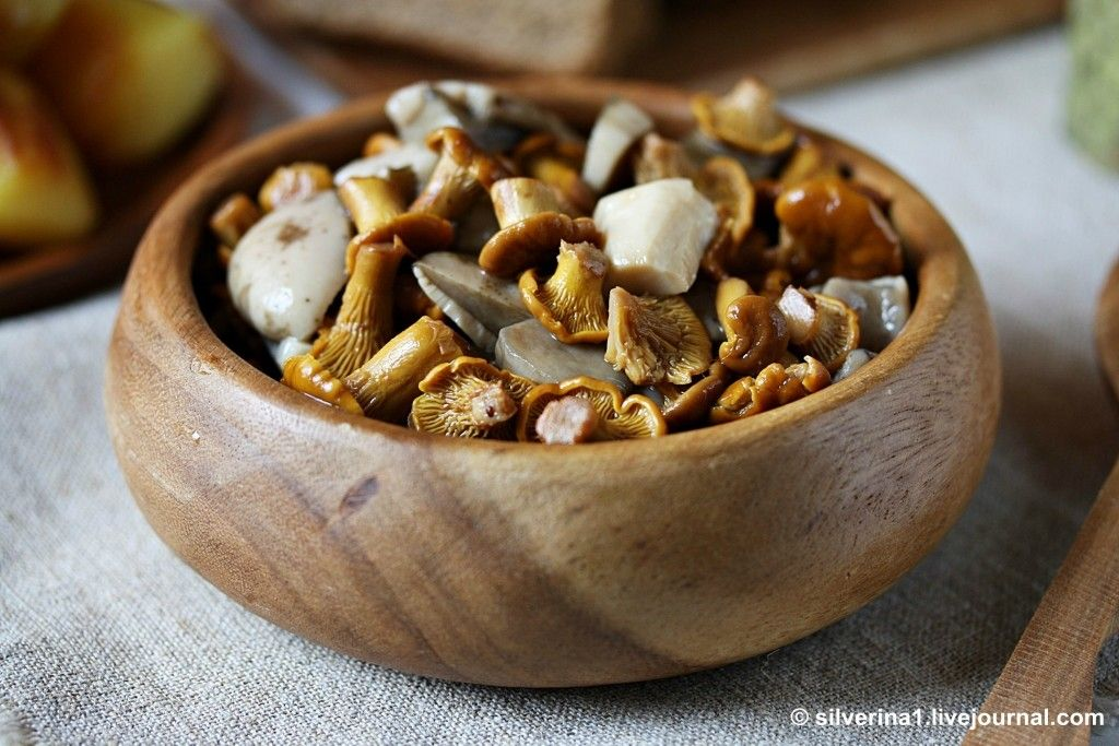 проверенный рецепт маринованных грибов