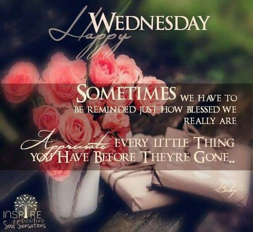 Happy Wednesday Appreciate The Little Things Good Morning Wednesday