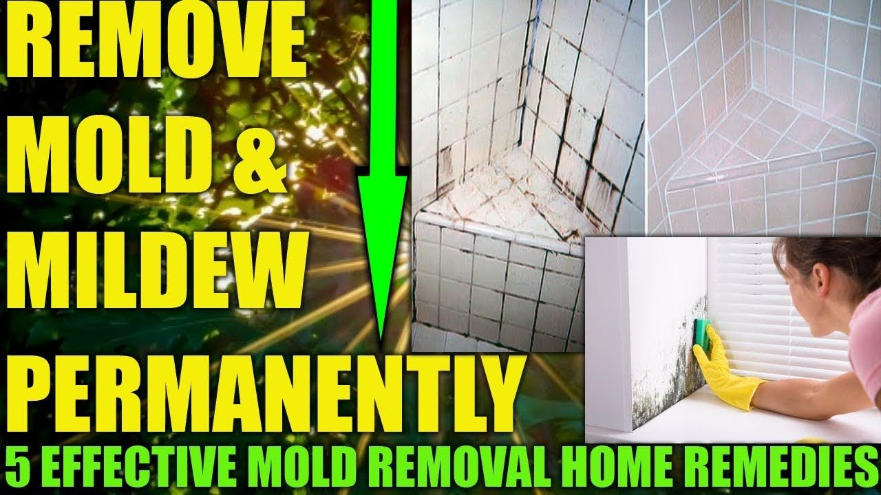 HOW TO GET RID OF MOULD & MILDEW ON WALLS PERMANENTLY