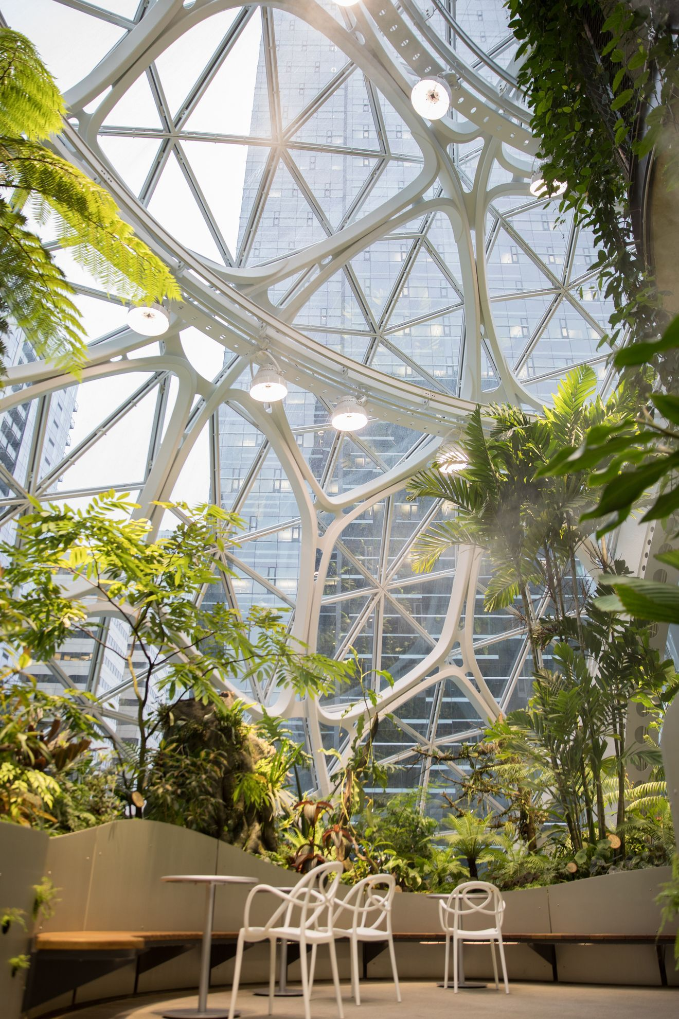 Inside the Amazon Spheres: The plants, the architecture, and a transforming city
