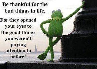 Thanks Kermit.