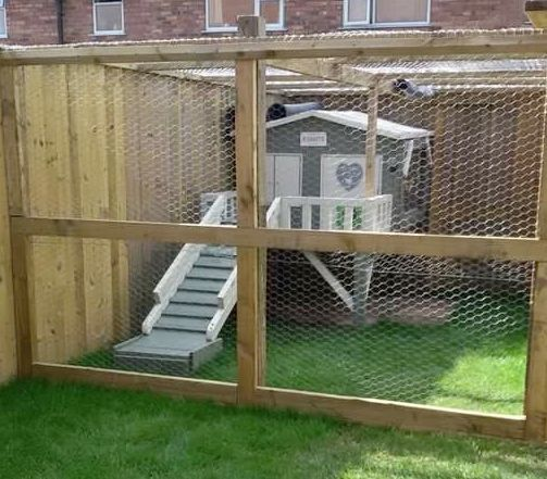 Great idea here for bunnies thanks angela for sending for Outdoor rabbit enclosure ideas