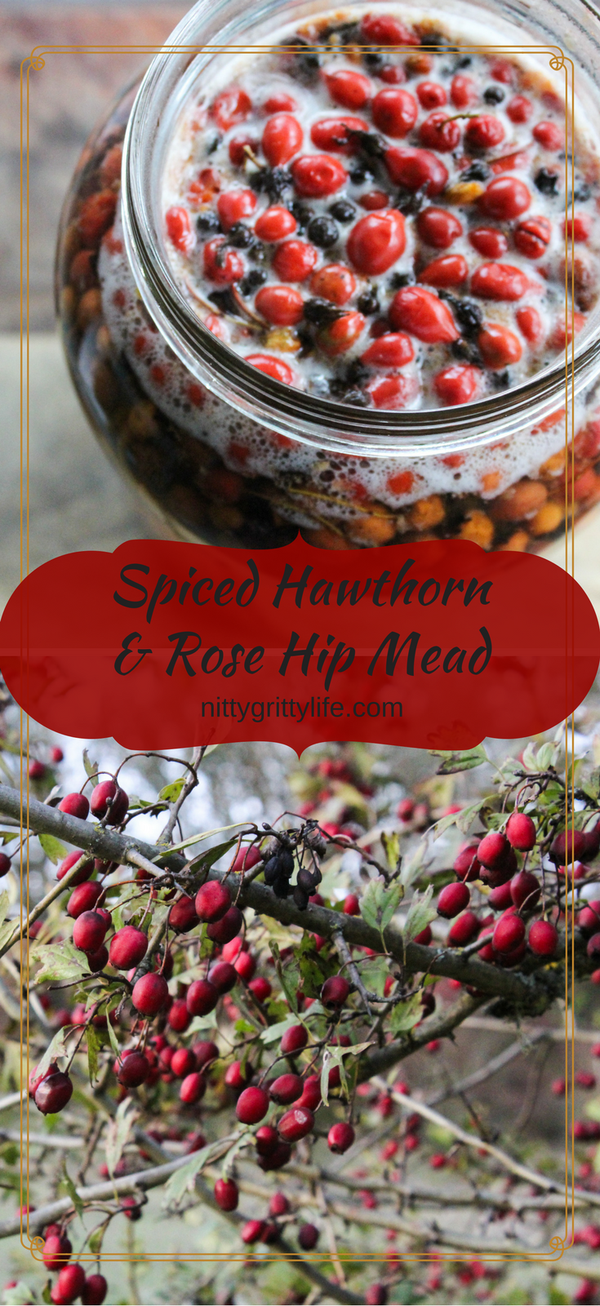 Spiced Hawthorn and Rose Hip Mead for a Joyful Heart