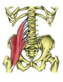 Explorefoam Roller Hip Flexor:yogabycandace:  6 Yoga Poses for Tight Hips #Exploretight #Hip #Flexors