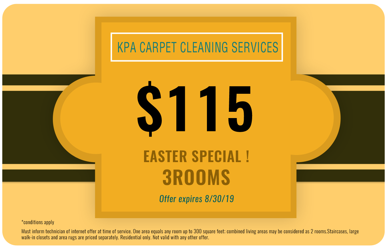 One Room Carpet Cleaning Specials