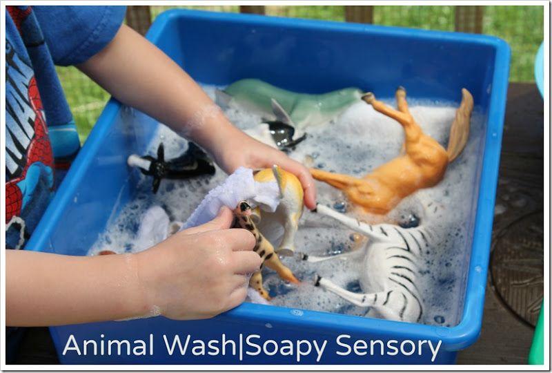 Animal wash soapy sensory play water animals preschool