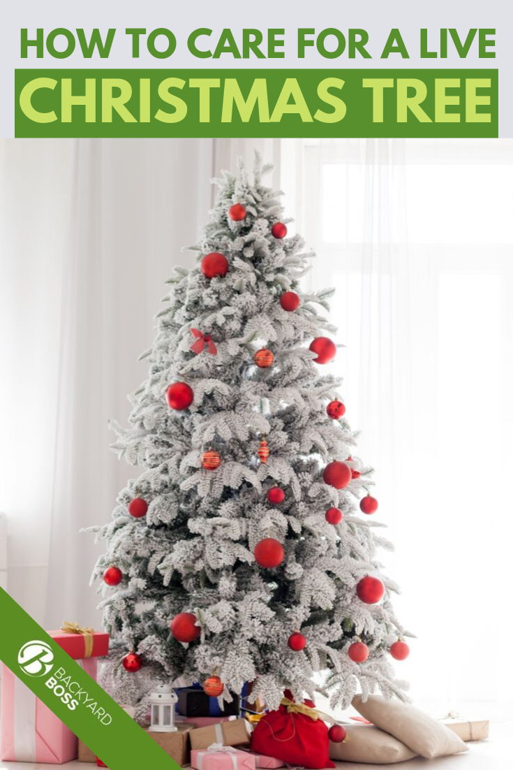 Wellhead And Christmas Tree Equipment Manual Guide