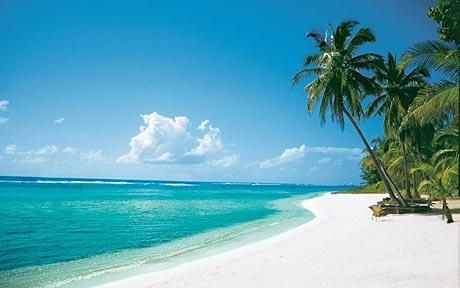 Grand Cayman Islands. I will go here one day even if it isn't for the honeymoon