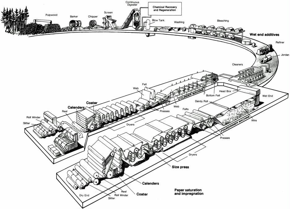 this general overview of the paper manufacturing process