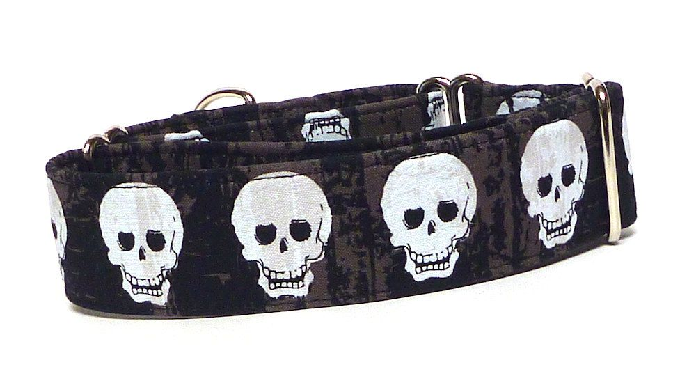 Halloween martingale dog collar 15 wide with black and
