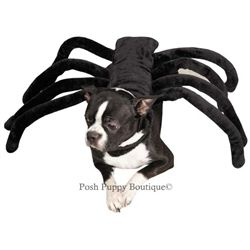 Grr Antula Costume Halloween Costumes Posh Puppy Boutique