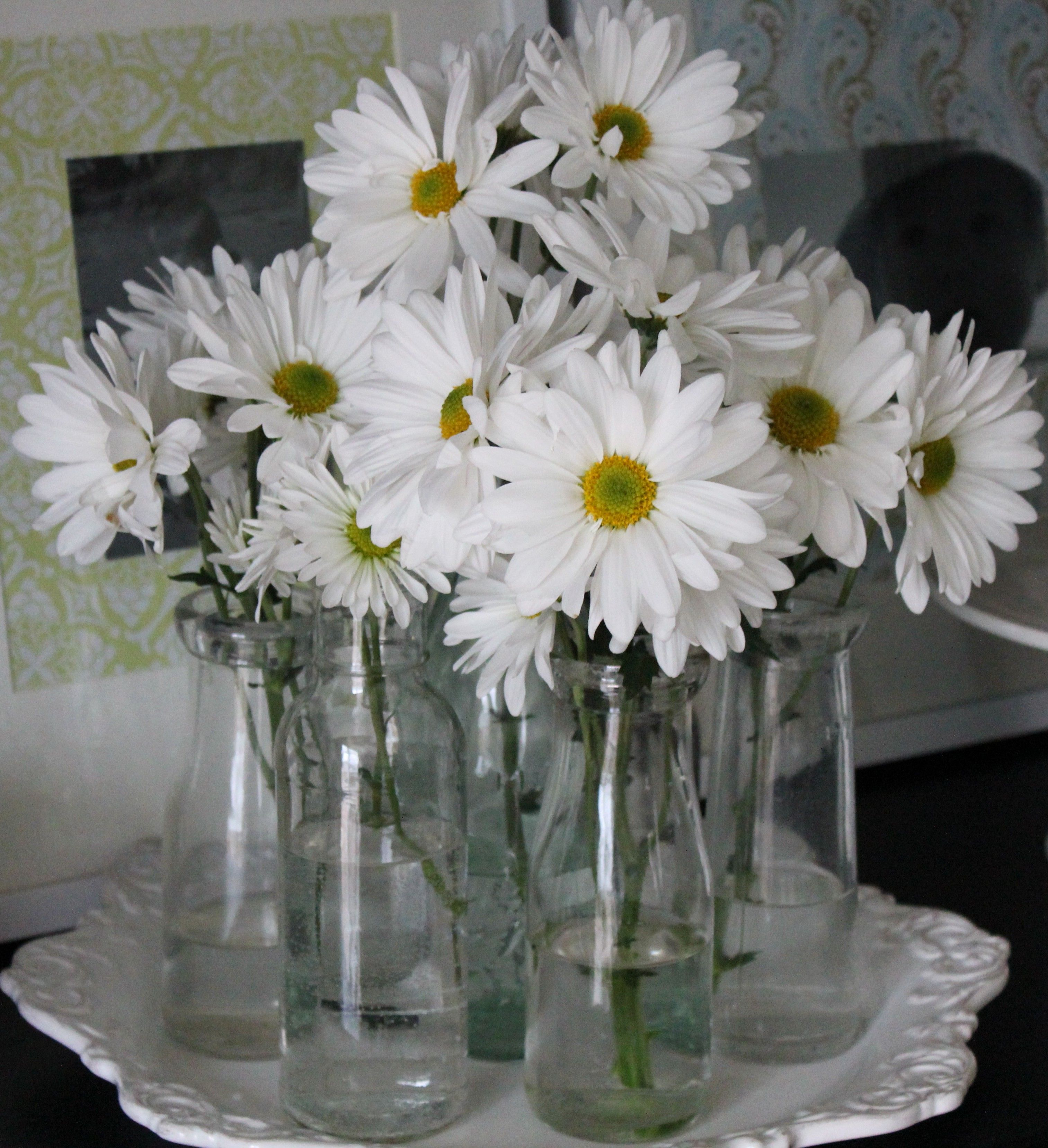When I Have A Home Of My Own, I Will Have Fresh Daisies Everywhere All