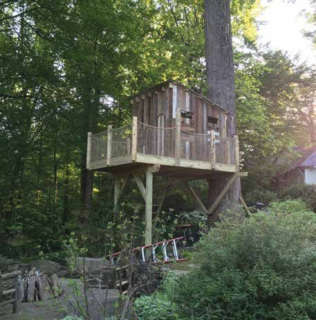 One Tree, Two Posts Treehouse Plan | GRIT Magazine | Tree ...