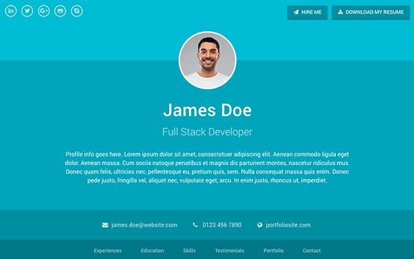 Bootstrap Resume Template Portfolio Themes Wrapbootstrap  Health  Pinterest
