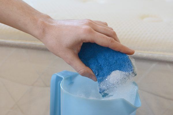 Can Mold Be Removed From a Foam Mattress? | Mildew remover ...